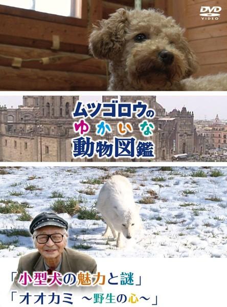 『ムツゴロウのゆかいな動物図鑑』シリーズ 「小型犬の魅力とその謎」「オオカミ〜野生の心〜」