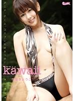 Kawaii 可愛きょうこ