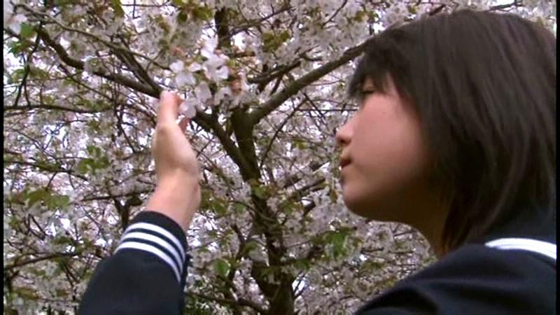 篠崎愛 「桜サクコロ」 サンプル画像 20