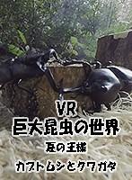 【VR】巨大昆虫の世界 夏の王様 -カブトムシとクワガタ-