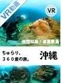 【VR】ちゅらり、360度の旅。@座間味島・渡嘉敷島