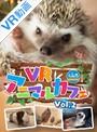 【VR】VRアニマルカフェfuleca Vol.2