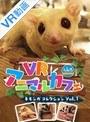 【VR】VRアニマルカフェfuleca モモンガコレクション Vol.1