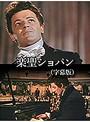 楽聖ショパン(字幕版)
