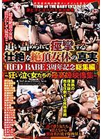 追い詰められて痙攣する 壮絶な絶頂女体の真実 RED BABE3周年記念総集編-狂い泣く女たちの最高峰映像集-