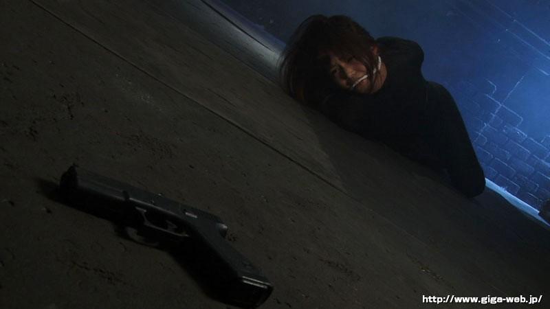 ヒロインイメージファクトリー 攻機特捜隊サイファーケルベロス 碧しの サンプル画像  No.1