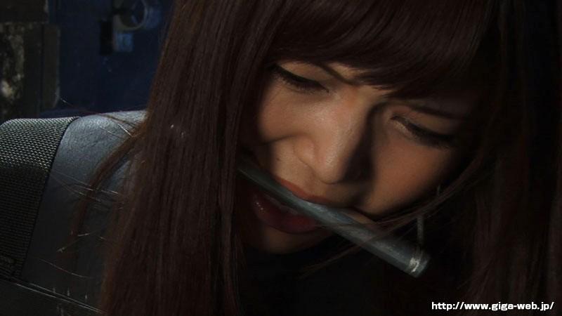 ヒロインイメージファクトリー 攻機特捜隊サイファーケルベロス 碧しの サンプル画像  No.6
