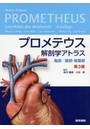 プロメテウス解剖学アトラス 胸部/腹部・骨盤部