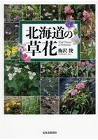 北海道の草花