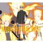 NARUTO FINAL BEST(DVD付)