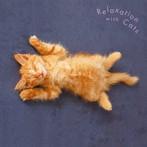 まるごと!猫(にゃ〜)〜ネコ・リラックス