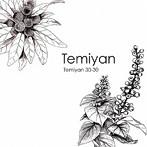 アグネス・チャン出演:Temiyan/Temiyan