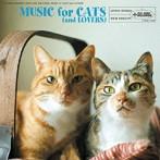 玉城ちはる出演:猫と音楽の蜜月
