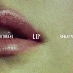 SEKAI NO OWARI/Lip(初回限定盤)(DVD付)
