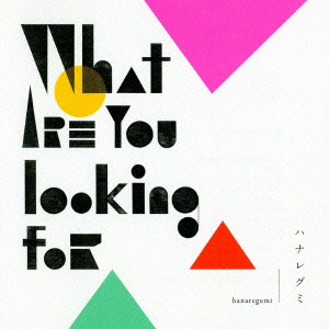 ハナレグミ/What are you looking for