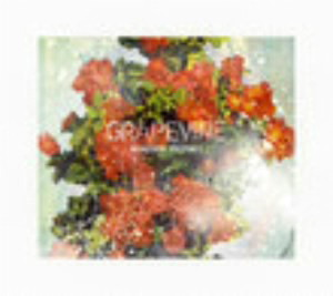 GRAPEVINE/ROADSIDE PROPHET(20th Anniversary Limited Edition)(初回限定盤)(DVD付)