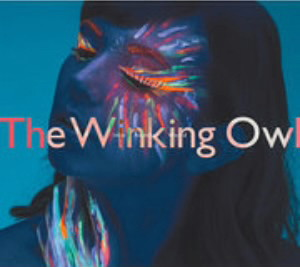 Winking Owl/Into Another World