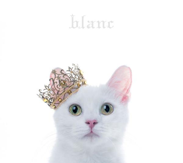 Aimer/BEST SELECTION 'blanc'(初回生産限定盤B)(DVD付)