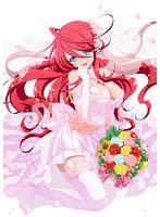 TVアニメ「進化の実」Blu-ray BOX(全12話) (ブルーレイディスク)