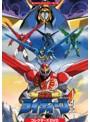 想い出のアニメライブラリー 第114集 超者ライディーン コレクターズDVD