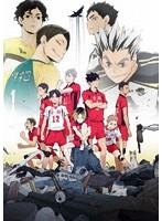 OVA『ハイキュー!! 陸 VS 空』[TBR-29288D][Blu-ray/ブルーレイ]