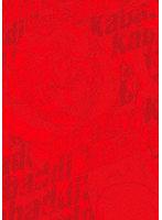 灼熱カバディ 3 (ブルーレイディスク)