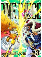 ONE PIECE ワンピース 18THシーズン ゾウ編 piece.3