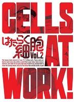 はたらく細胞 2 (完全生産限定版 ブルーレイディスク)