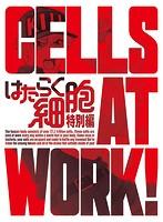 はたらく細胞 特別編 (完全生産限定版 ブルーレイディスク)