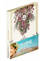 ミッドサマー 豪華版 スチールブック仕様 (初回生産限定版 ブルーレイディスク+DVD)