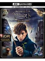ファンタスティック・ビーストと魔法使いの旅 (4K ULTRA HD+2Dブルーレイディスクセット)