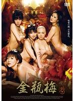 金瓶梅(きんぺいばい)<下巻>【若菜ひかる出演のドラマ・DVD】