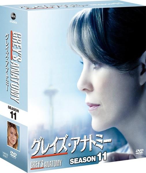 グレイズ・アナトミー シーズン11 コンパクト BOX