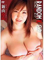 新山らん~RANDOM K CUP/新山らん