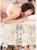 飼い猫【初美沙希出演のドラマ・DVD】
