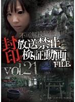 封印!!放送禁止検証動画FILE