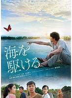 鶴田真由出演:海を駆ける
