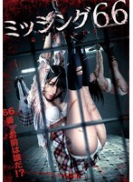 ミッシング66【辰巳ゆい出演のドラマ・DVD】