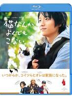 市川実和子出演:猫なんかよんでもこない。(ブルーレイディスク)