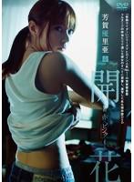 芳賀優里亜出演:芳賀優里亜