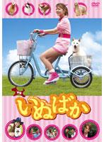 映画「いぬばか」【相沢まき出演のドラマ・DVD】