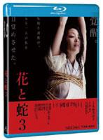 小向美奈子出演:花と蛇3