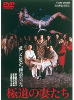 佳那晃子出演:極道の妻たち