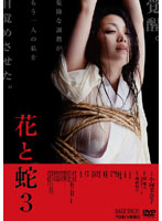 花と蛇3【小向美奈子出演のドラマ・DVD】