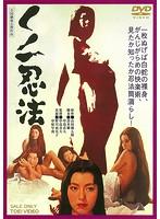 くノ一忍法【野川由美子出演のドラマ・DVD】