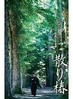 散り椿 (ブルーレイディスク)