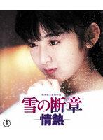 斉藤由貴出演:雪の断章