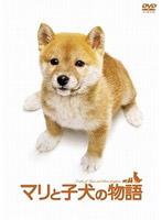 小林麻央出演:マリと子犬の物語