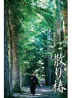 麻生久美子出演:散り椿