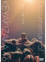僕たちの嘘と真実 Documentary of 欅坂46 DVD スペシャル・エディション(2枚組)